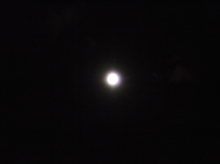 FULL MOON FEVER_e0230141_2331546.jpg