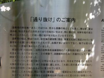 きんしん青年経営者の会交流会_f0099455_152369.jpg