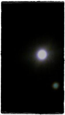 a0211669_23284139.jpg