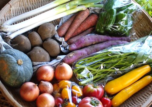 今週の野菜セット(9/12~9/17着)_c0110869_21585141.jpg