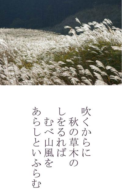 むべ山風をあらしといふらむ_d0021969_1023236.jpg
