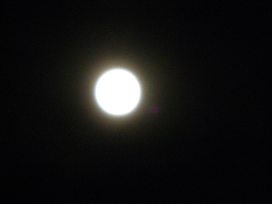 月夜/せともの祭り終了_d0178891_224914100.jpg