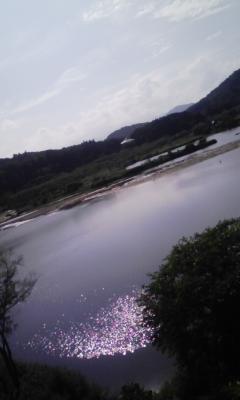 牛すじ見込み丼&白川ダム源流へ_f0168392_1492024.jpg