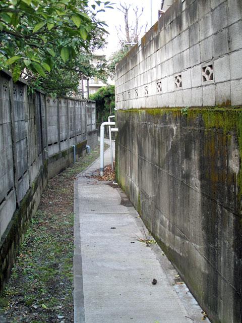 北沢川源流域/北沢分水を辿る(8)江下山堀の暗渠と開渠を辿る その2_c0163001_23124261.jpg