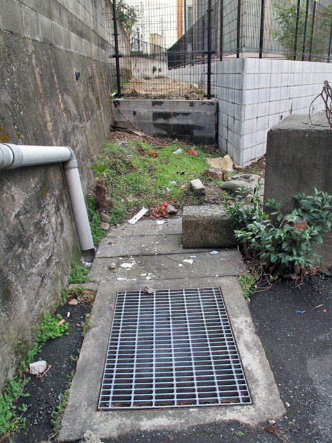 北沢川源流域/北沢分水を辿る(8)江下山堀の暗渠と開渠を辿る その2_c0163001_2313672.jpg
