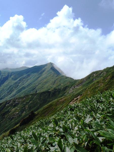 谷川岳-天神尾根(下見)_c0177814_10435430.jpg