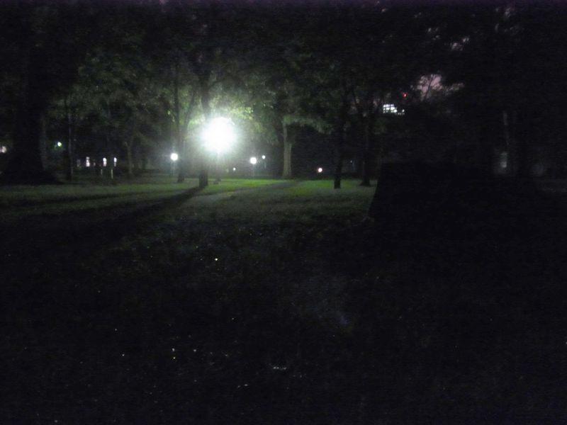 夜と朝_c0025115_19308.jpg