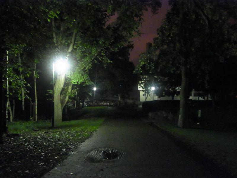 夜と朝_c0025115_193227.jpg