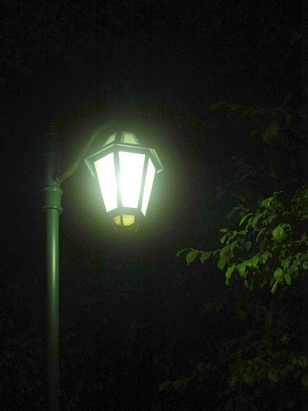 夜と朝_c0025115_193548.jpg