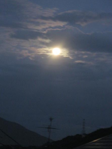 「満月のライブ」~~☆_a0125419_11321997.jpg