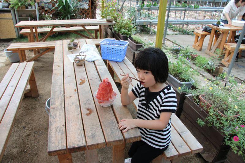 ぶどう食べ比べ_d0159738_1053331.jpg