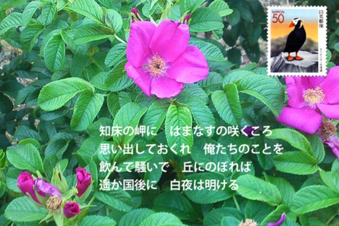 e0151340_10453512.jpg