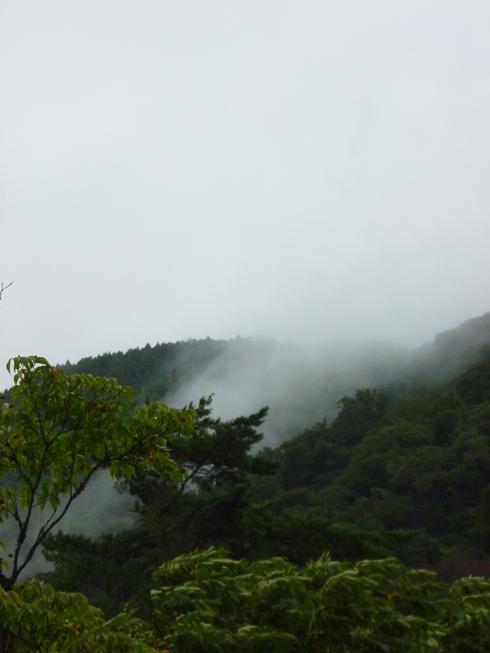 旅の中の小さな旅 湯布院 亀の井別荘_a0053662_1630204.jpg