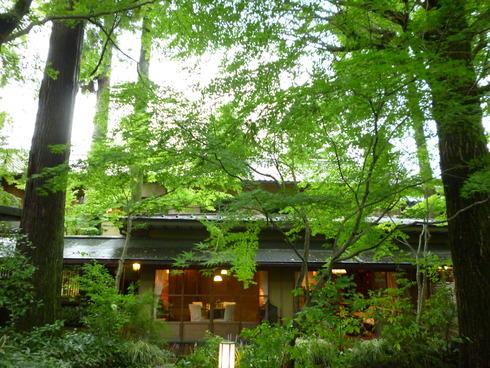 旅の中の小さな旅 湯布院 亀の井別荘_a0053662_16475642.jpg