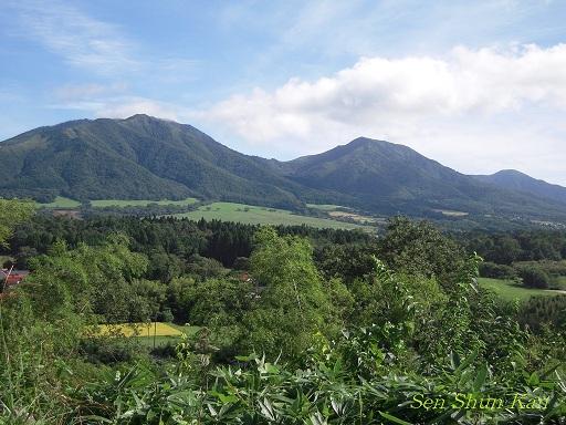 蒜山高原・鳥取砂丘_a0164068_22425036.jpg