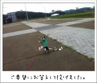 f0168374_1728324.jpg