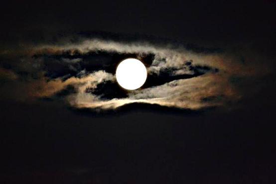 月を眺めて・・・・・・_c0119197_841649.jpg