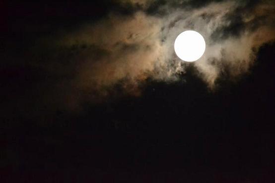 月を眺めて・・・・・・_c0119197_844567.jpg