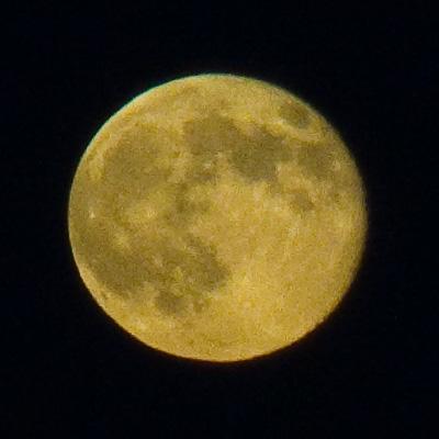 一夜遅れの月_f0169811_0333164.jpg