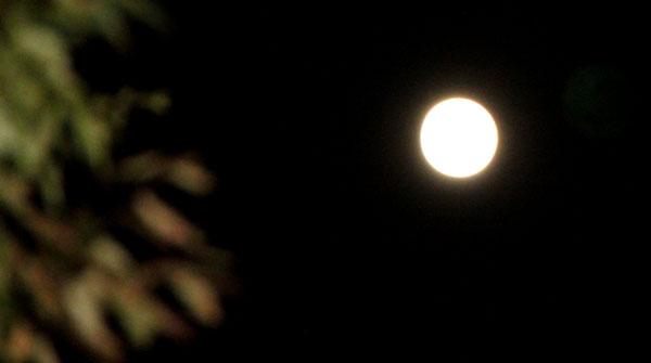 十六夜の月 久我神社など_e0048413_1225221.jpg