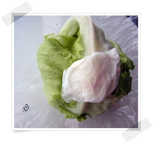 「レタスを新鮮に保つ方法」と「ゆで卵の調理法」_f0012718_1121084.jpg