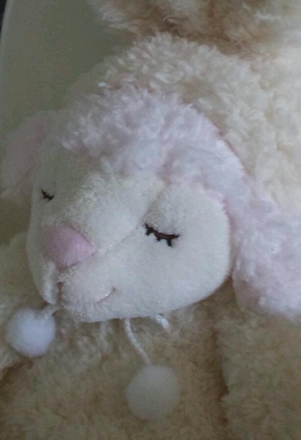 Sheep_a0168628_1227258.jpg