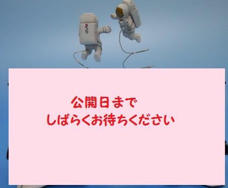 e0164951_0504084.jpg