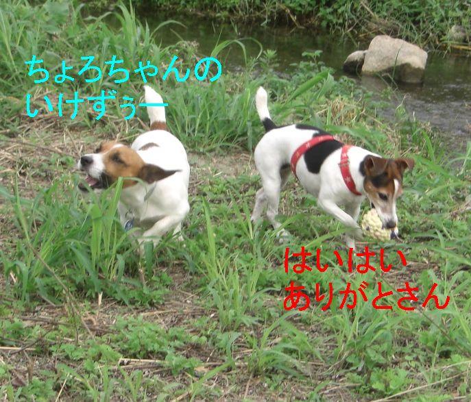 f0053952_1332132.jpg