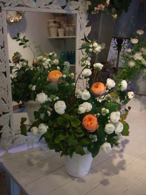 オークリーフ花の教室(宇田さん・落合さんの作品)_f0049672_17302617.jpg