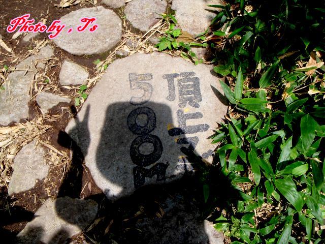 f0147821_183487.jpg