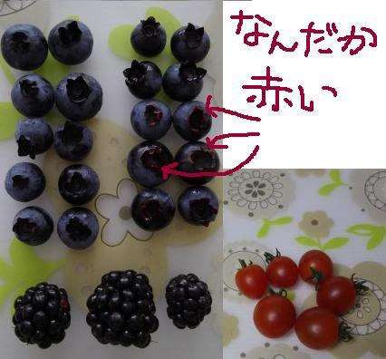 b0181524_2002771.jpg