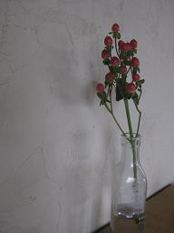f0161329_16244699.jpg
