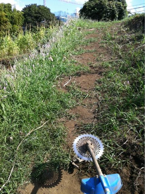 今日も晴天 夏日より・・・雑草を刈ります _c0222448_13504419.jpg