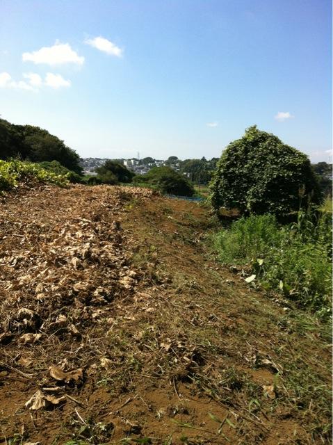 今日も晴天 夏日より・・・雑草を刈ります _c0222448_135104.jpg