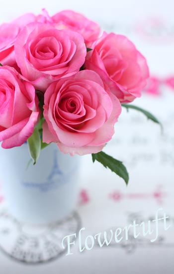 ピンク色の表現☆_c0137872_20295841.jpg