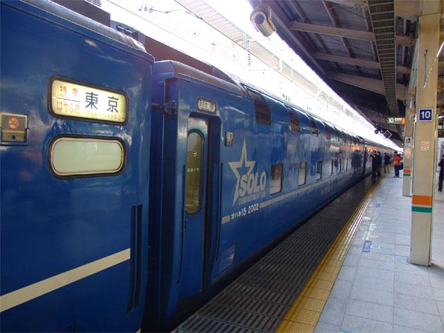 カピバラ抱き枕ちゃんの旅_a0179837_19181193.jpg