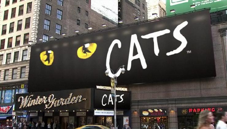 飼い主のいるコロラドから2600Km離れたニューヨークで発見された猫ちゃん_b0007805_2413618.jpg