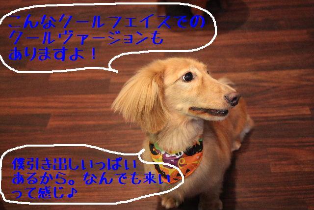 b0130018_9155284.jpg