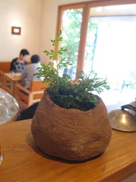 cafe&handmede WAMへ~~_a0125419_23521135.jpg