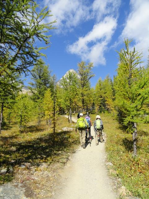 初秋のラーチバレー・ハイキング_d0112928_14415636.jpg