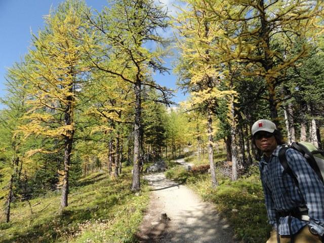 初秋のラーチバレー・ハイキング_d0112928_1442393.jpg