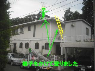 屋根塗装の準備_f0031037_18295571.jpg