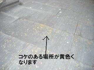 屋根塗装の準備_f0031037_18311495.jpg