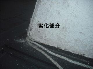 屋根塗装の準備_f0031037_18312926.jpg
