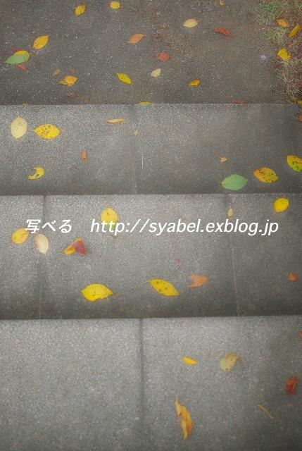 c0153764_14224391.jpg