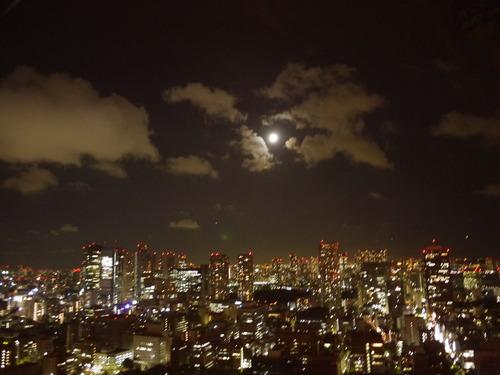 ニヤリ(東京タワー)_f0025970_0331042.jpg