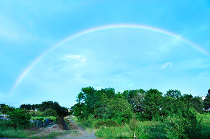 虹の橋_f0144394_2254377.jpg