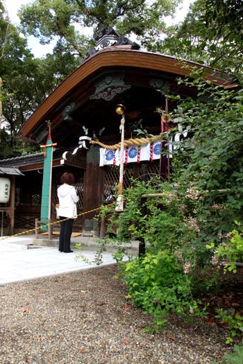 萩まつり1 梨の木神社_e0048413_20333758.jpg