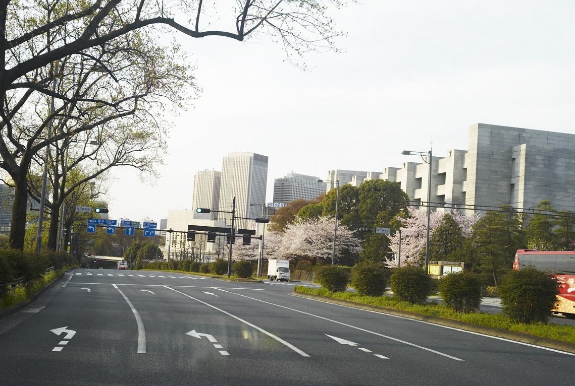 桜の東京朝の景色_b0212922_22123325.jpg