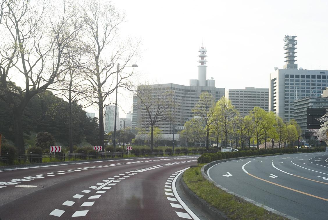 桜の東京朝の景色_b0212922_22124415.jpg